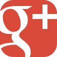 YSI Google Plus icon