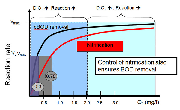 Activated-Sludge-Reaction-Rate-vs-DO-Concentration.jpg