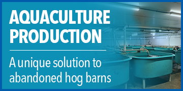 Aquaculture Facility Thrives in Former Hog Barn | Sustainable Seafood Production