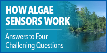 How Algae Sensors Work | Answers to Four Challenging Questions