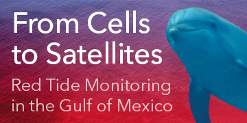 Red Tide Monitoring in the Gulf of Mexico | From Cells to Satellites
