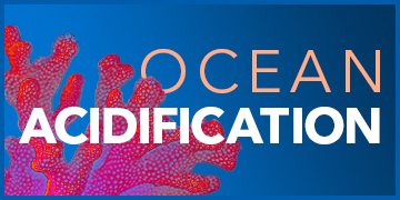 Ocean Acidification | The Devastating Ripple Effect of a pH Change