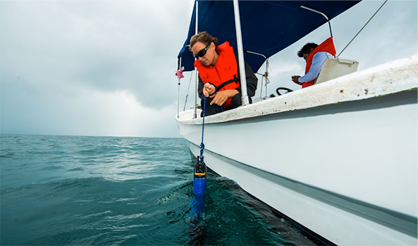 EXO2 Sonde Water Quality Ocean Testing | Ocean Acidification | YSI