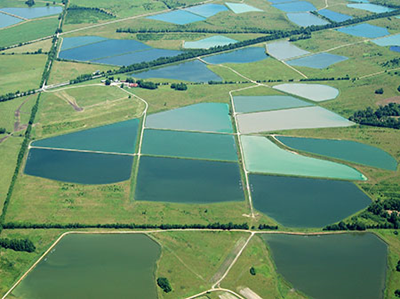Overhead-Aquaculture-Ponds.jpg