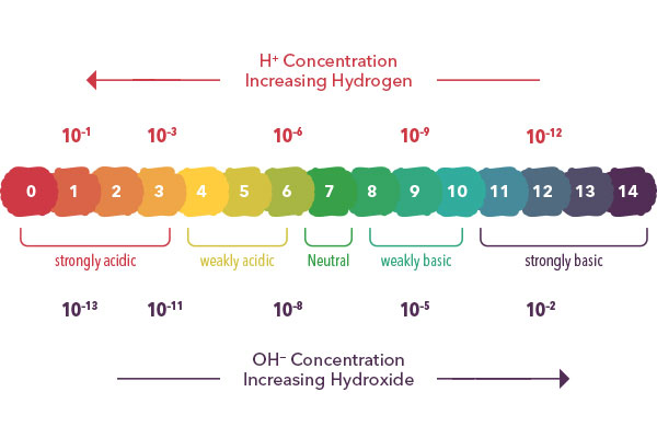 pH Scale | YSI the Ultimate pH Primer