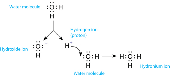 pH of Water | Dissociation and formation of hydronium | YSI