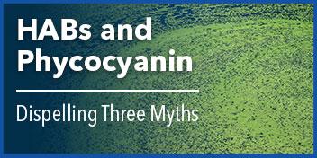 harmful algal blooms phycocyanin