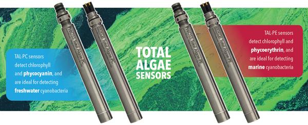 Algae Sensor Water Quality