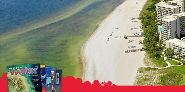 Florida Coastline During Red Tide | YSI