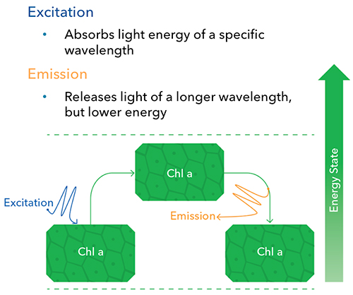 Are-You-Ready-for-HAB-Excitation-vs-Emission.jpg