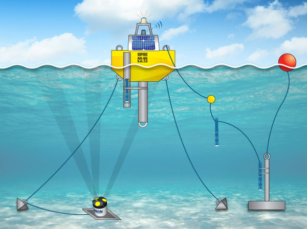 Buoy System Illustration with No Words