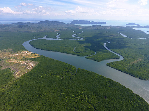 Estuary-Ideal-Environment-for-YSI-Pro2030-Meter.jpg