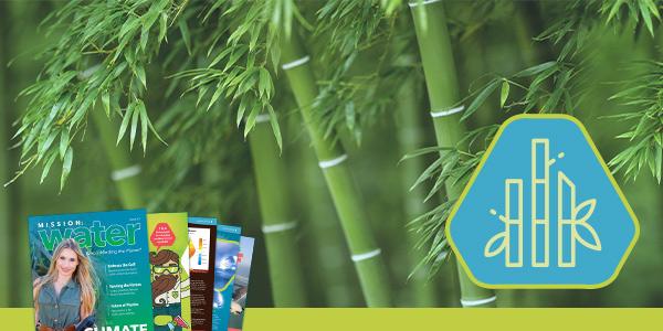 Alternatives to Plastic | Bamboo