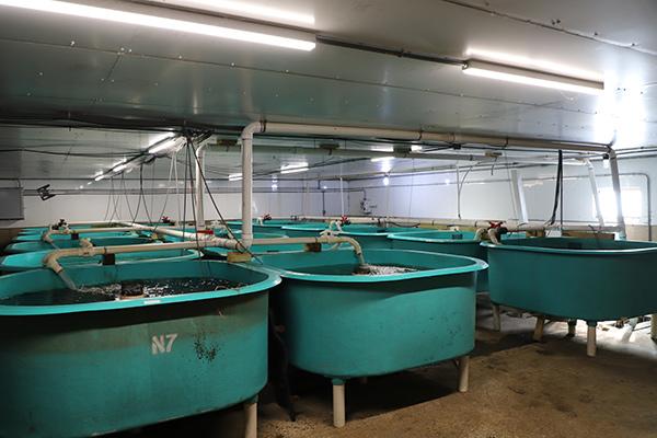 Hanilu Farms RAS Aquaculture | 5500D | YSI