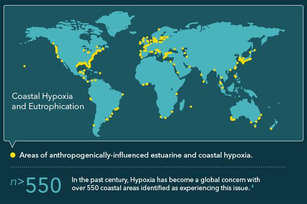 Hypoxia-Blog-Image-3.jpg