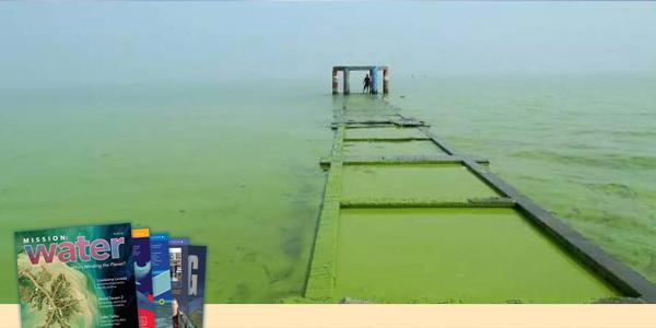 Lake Taihu Green Water Washing Over Dock