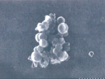 Phosphorus Baby FeOH Floc Dr. Vladimir Kitaev, Wilfrid Laurier University