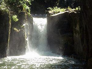 Tualatin-River-TMDL-Haines-Falls.jpg
