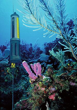 YSI Sonde Coral Reef Deployment in Guam