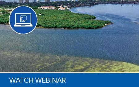 harmful algal bloom action plan