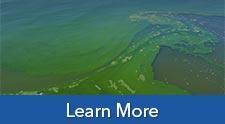 Harmful Algal Blooms Water Quality Monitoring