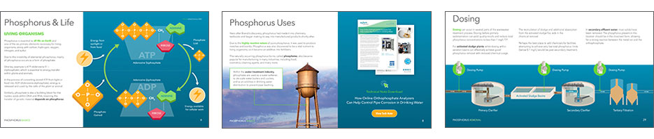 Phosphorus Guide For Water