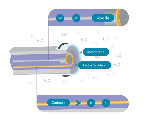 dissolved oxygen sensor electrochemical